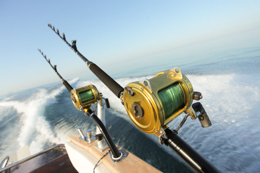 cabo-deep-sea-fishing-los-cabos-mexico