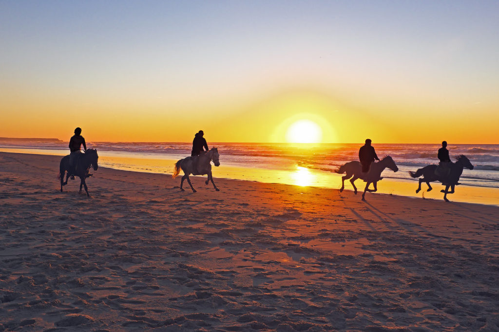 cabo-horse-back-riding-los-cabos