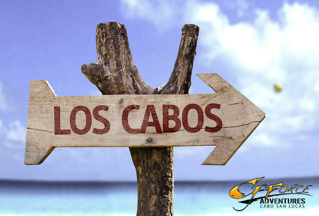 tours in los cabos mexico