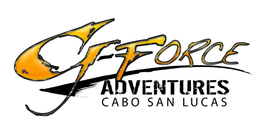Logo G-Force
