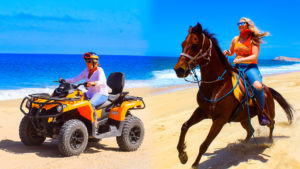 Horse Ride and ATV Tour